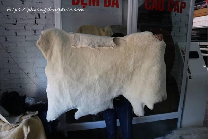 Phân phối Da lông cừu nguyên con nhập khẩu